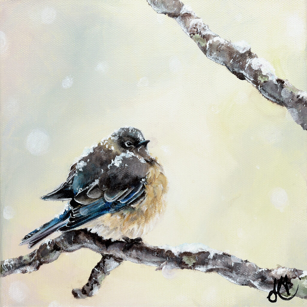 Male blue bird perched on branch during snowfall.